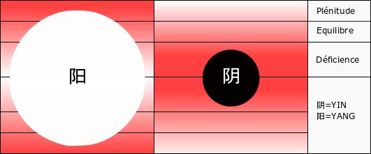 Yang en excès avec déficience de yin