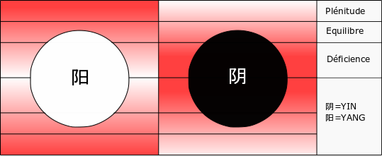 Yin ping yang mi, yin et yang équilibre
